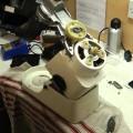 repair food processor